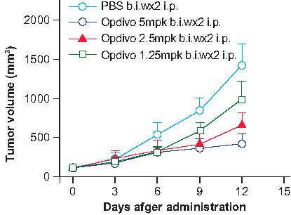 免疫检查点人源化小鼠-18.09.11-002-pd-1-药效.jpg