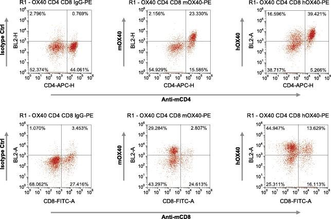 图片3免疫检查点人源化小鼠-005-ox40(流式)修改后.jpg